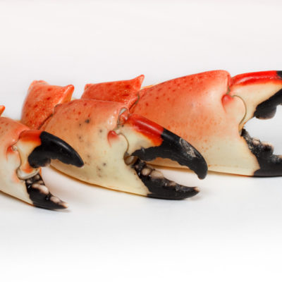Stone Crab Claws in Charlotte, NC