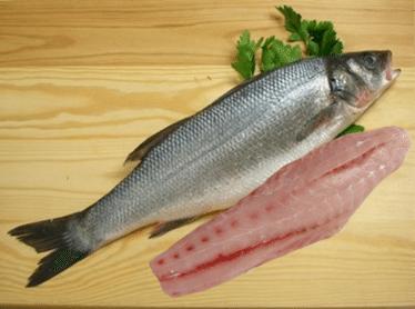 California White Sea Bass Carolina Meat Fish Co