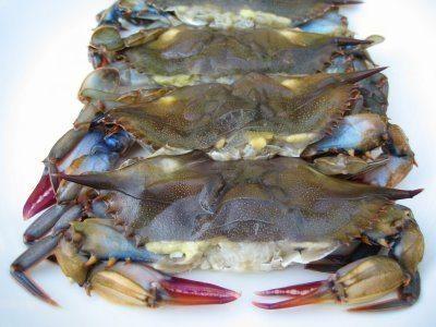 Soft Shell Blue Crab Charlotte NC