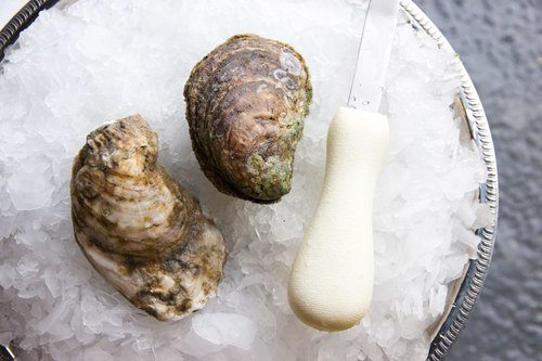 Best Oysters in Charlotte, NC by Yelp