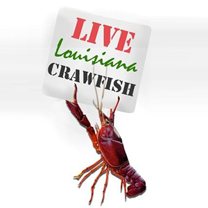 Live Crawfish Charlotte, NC