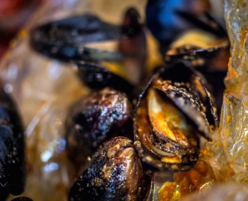 Mussels Charlotte NC