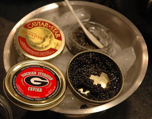 Caviar in Charlotte, NC
