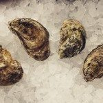 Bodie Island Oysters at the Carolina Fish Market