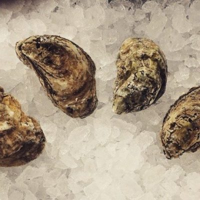 Bodie Island Oysters at the Carolina Meat & Fish Co