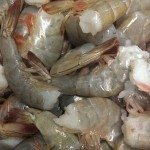 Fresh Carolina shrimp from the Carolina Fish Market in Charlotte, NC